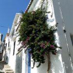 0601 – Business premise in Salobreña