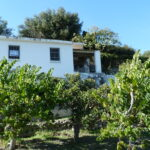 0252 – Country Property in Salobreña
